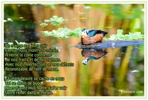 Miroir Poésie  dans PENSEE miroir-poesie-300x204